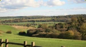 Preston Hill