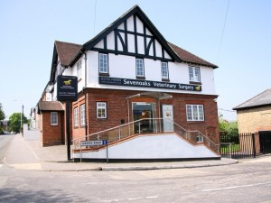 Sevenoaks Veterinary Surgery