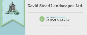 David Stead Landscapes
