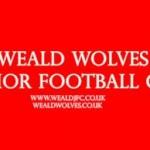 Weald Wolves Junior Football Club