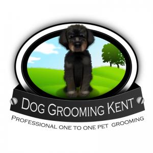 Dog Grooming Kent