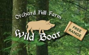 Orchard Hill Farm