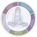 Daisy Birthing Classes - The Daisy Foundation