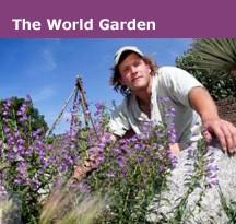 The World Garden Lullingstone Castle